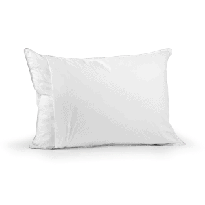 Nomite down proof pillow protector