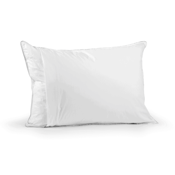 Nomite Pillow Protector