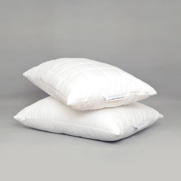 Thermoclean anti mite pillow
