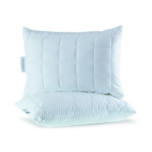 Thermoclean anti mite washable pillow 1