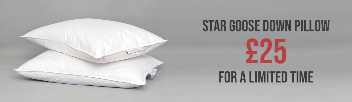 Star Goose Down Pillow Campaign